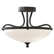 3 - Light Indoor Semi-Flush Mount